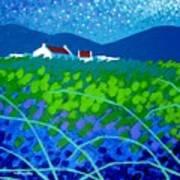 Starry Night In Wicklow Art Print by John  Nolan