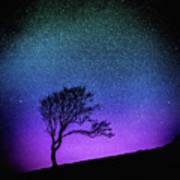 Starry Starry Night Art Print