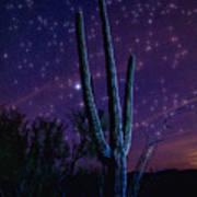 Starry Starry Sonoran Skies  Art Print