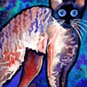 Startled Cornish Rex Cat Art Print by Svetlana Novikova