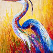 Steady Gaze - Great Blue Heron Art Print by Marion Rose