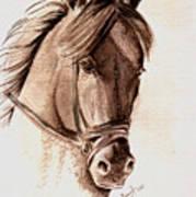 Steely Black Stallion Art Print