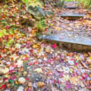 Step Into Fall Art Print