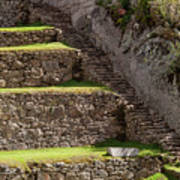 Steps And Terraces Art Print