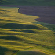 Steptoe Butte 12 Art Print