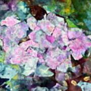 Sticky Geranium Art Print by Don  Wright