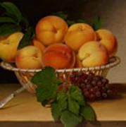 Still Life - Basket Of Peaches Art Print
