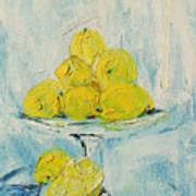 Still Life - Lemons Art Print