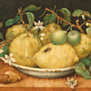 Still Life With Bowl Of Citrons Art Print