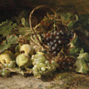 Still-life With Grapes And Pears Art Print