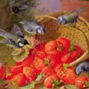 Still Life With Strawberries And Bluetits Art Print