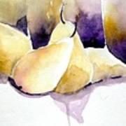 Still Of Pears Art Print