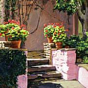 Stone Patio California Art Print
