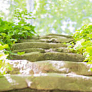 Stone Stairs Art Print by Stefano Piccini