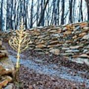 Stone Wall Ga Mountain 1 Art Print