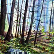 Stoneybrook Art Print