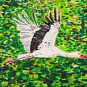 Stork In Flight Art Print