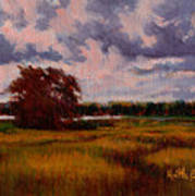 Storm Over Marshes Art Print
