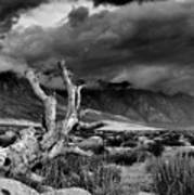 Storm Over Wheeler Crest Art Print