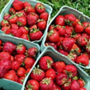 Strawberries In A Box On The Green Grass Art Print