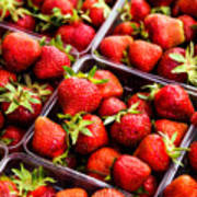 Strawberries With Green Weed In Plastic Containers  Art Print