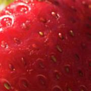 Strawberry Macro Art Print