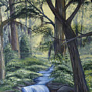 Stream In The Low Country Art Print