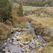 Stream In The Ogwen Valley Art Print
