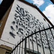 Street Art At The Campidoglio Neighborhood - 5 Art Print