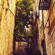 Street In Dubrovnik Old Town Art Print