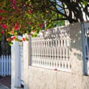 Street In Key West Art Print