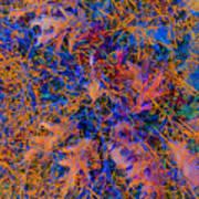 Strings 01 Art Print