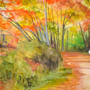 Strolling Along The Canal Art Print