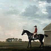 Stubbs: Gimcrack, 1765 Art Print