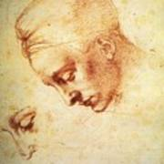 Study For The Head Of Leda Art Print