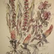 Study Of Flowers S Art Print