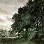 Study Of Trees Art Print by John Constable