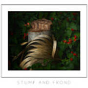 Stump And Frond Poster Art Print