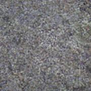Subtle Lichen On Granite Texture Art Print
