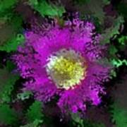 Succulent Bloom Art Print