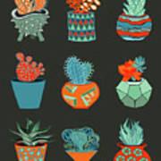 Succulent Garden No. 1 Art Print