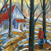 Sugar Bush Art Print