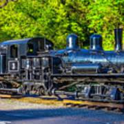 Sugar Pine Railway Train Art Print