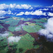 Sugarcane Fields In Central Maui Art Print