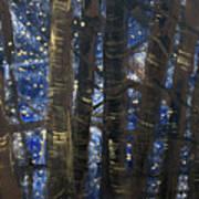 Sukkot II Stars 2015035  Art Print