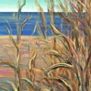 Summer Beach Grasses Art Print