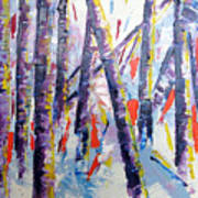 Summer Birches Art Print