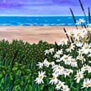 Summer Breezes Make Me Feel Fine Art Print