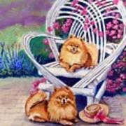 Summer Day - Pomeranian Art Print by Lyn Cook