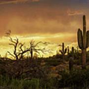 Summer Desert Skies  Art Print